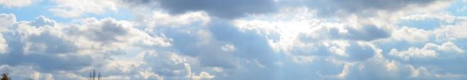 道後聖墓苑永代供養墓【聖光】からの風景